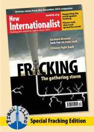 NI Dec2013 the_Fracking_files cover