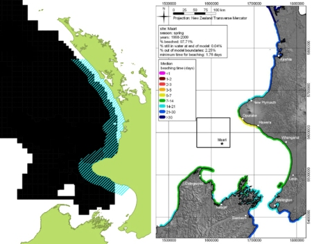 Maui Dolphin IWC protection mining Slooten OMV spill model map corrected