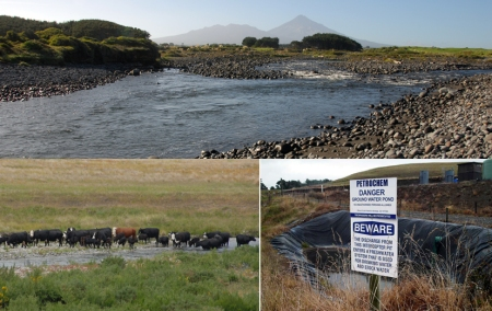 stony river mouth cows molesworth petrochem danger