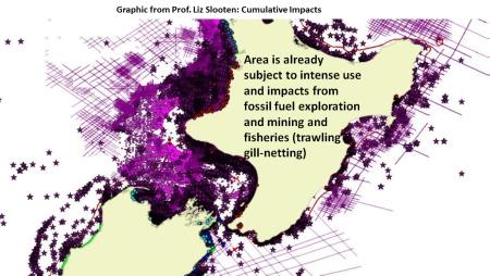 Slooten cumulative effects on marine mammal 2017
